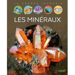 Les minéraux | Simon, Philippe. Auteur