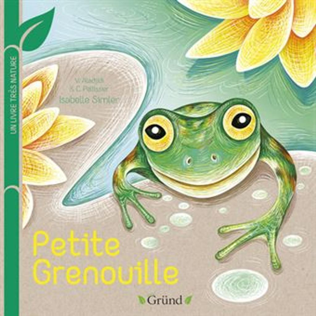 Petite grenouille |